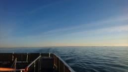 Skøn morgen på vej fra Göteborg (12)