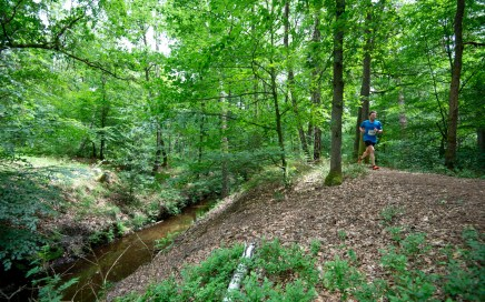 veluwezoomtrail, video, runnersworld, trailrunning