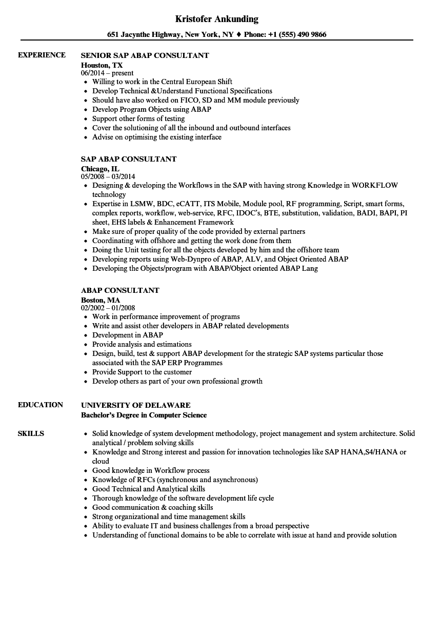 consultant resume examples