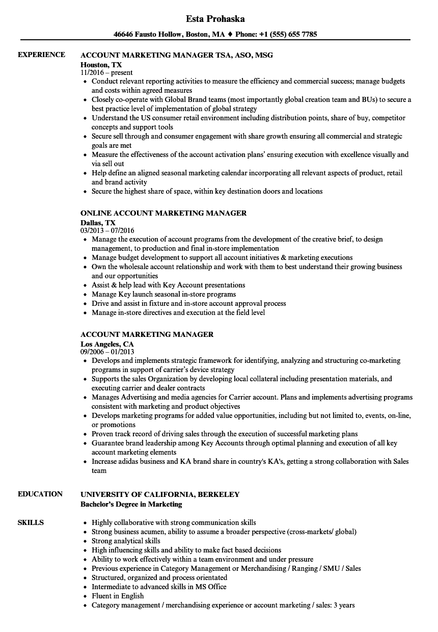 Marketing Manager Resume Examples - Examples of Resumes