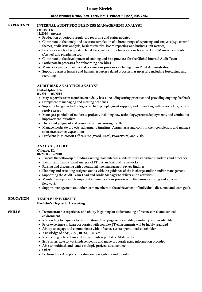 internal audit assistant resume sample
