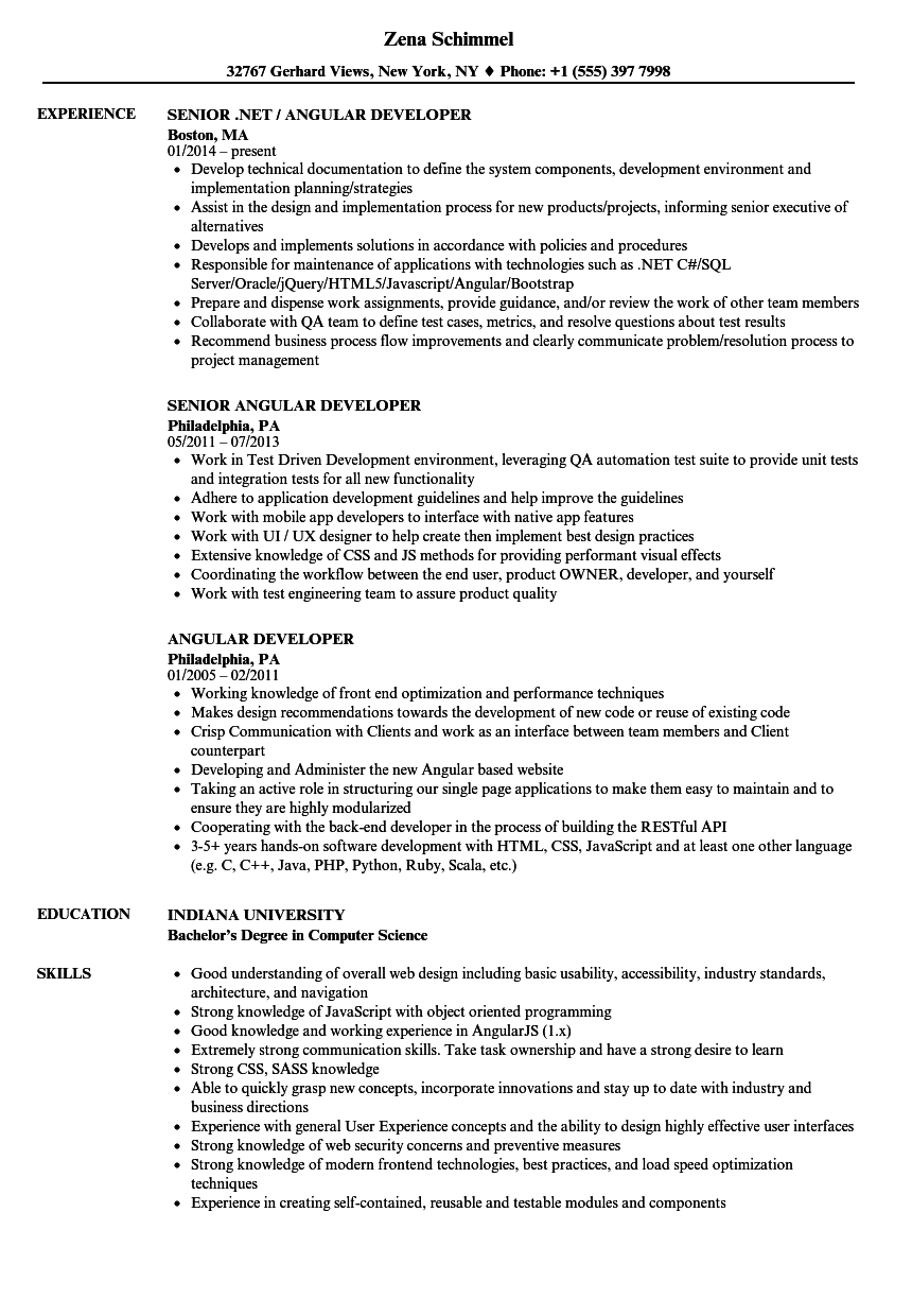 angular 5 sample resume