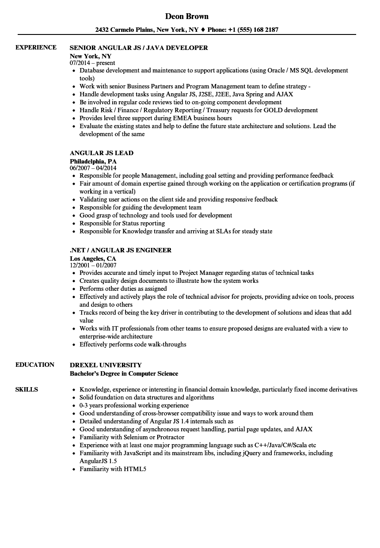 sample resume ui developer