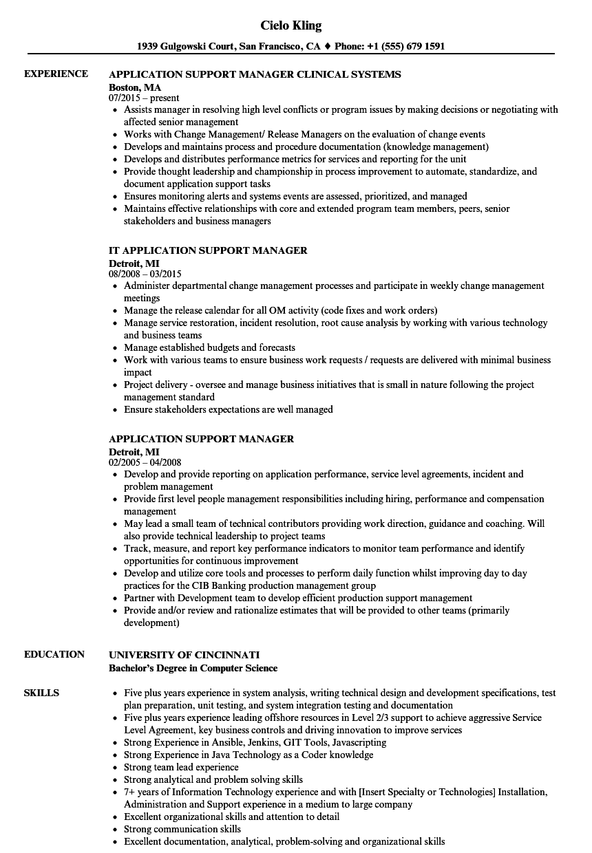 application development manager sample resume