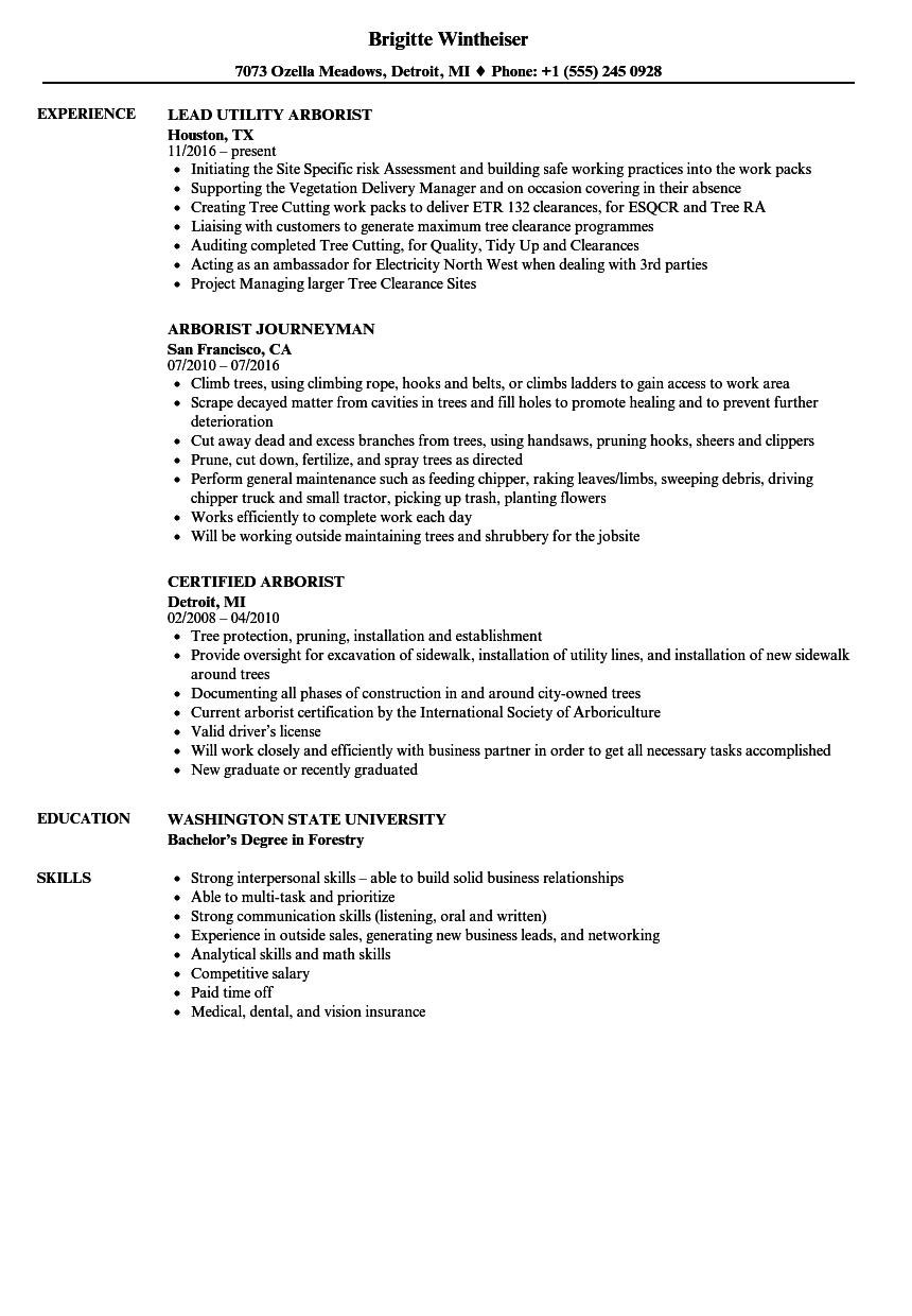 Gallery of Entry Level Job Objective ~ Resumes Examples For Jobs