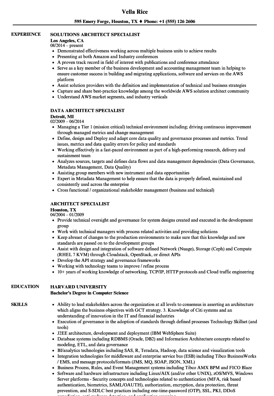 chief enterprise architect resume sample
