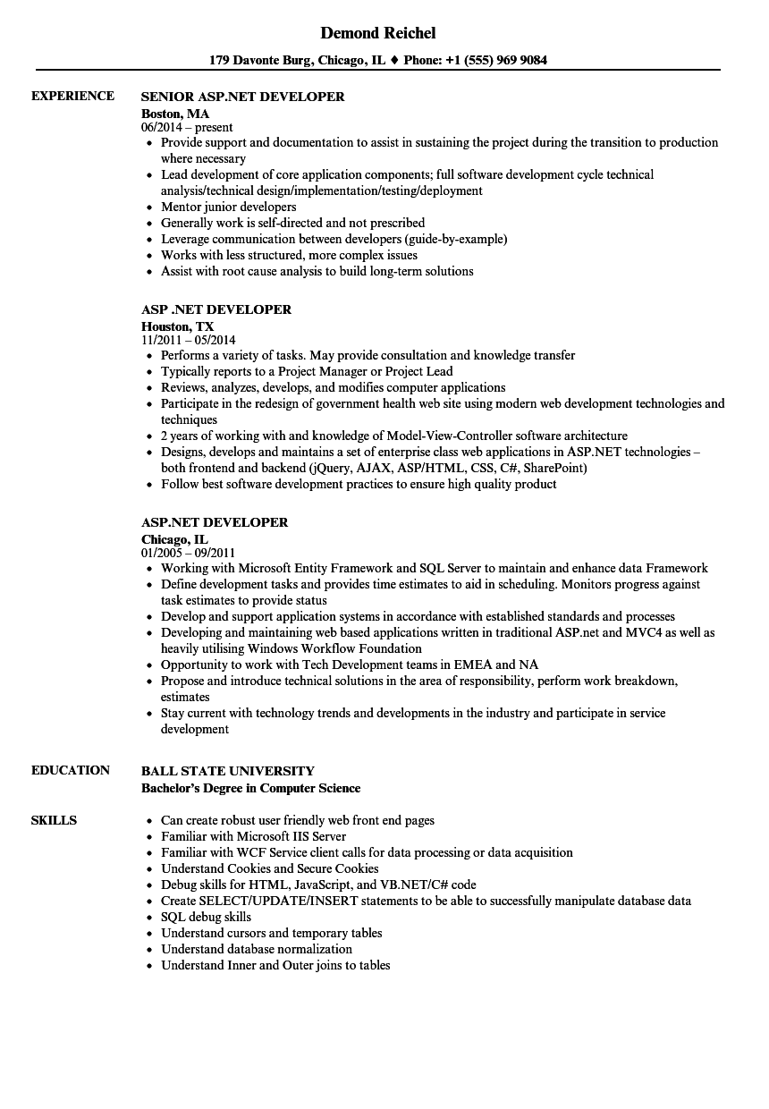www sample resume net
