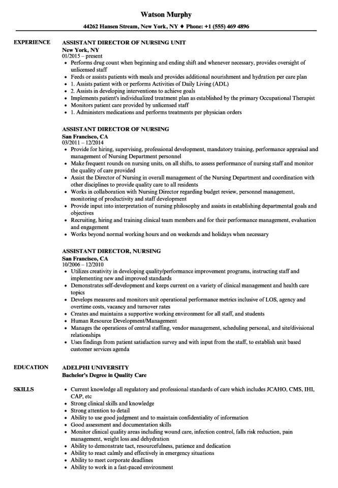 Istant Director Nursing Resume Samples Velvet Jobs