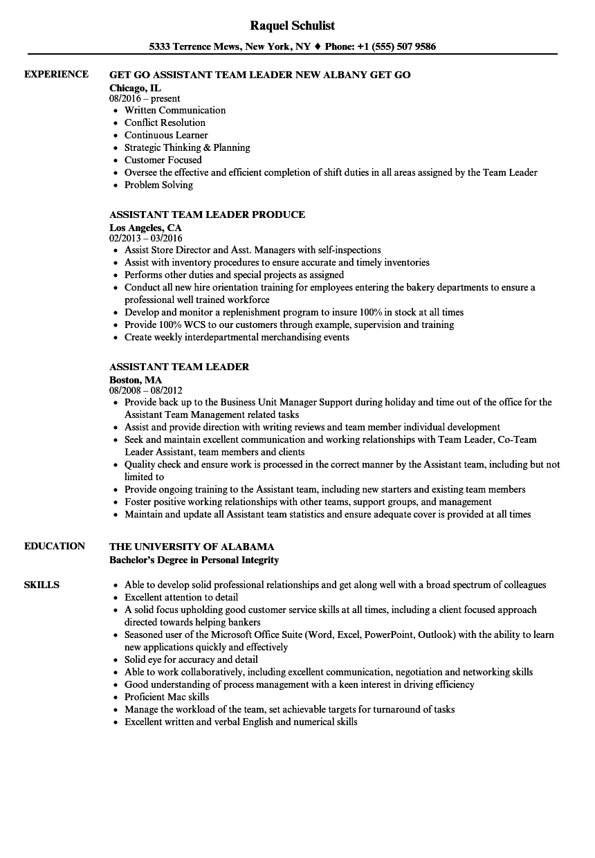 Assistant Team Leader Resume Samples  Velvet Jobs