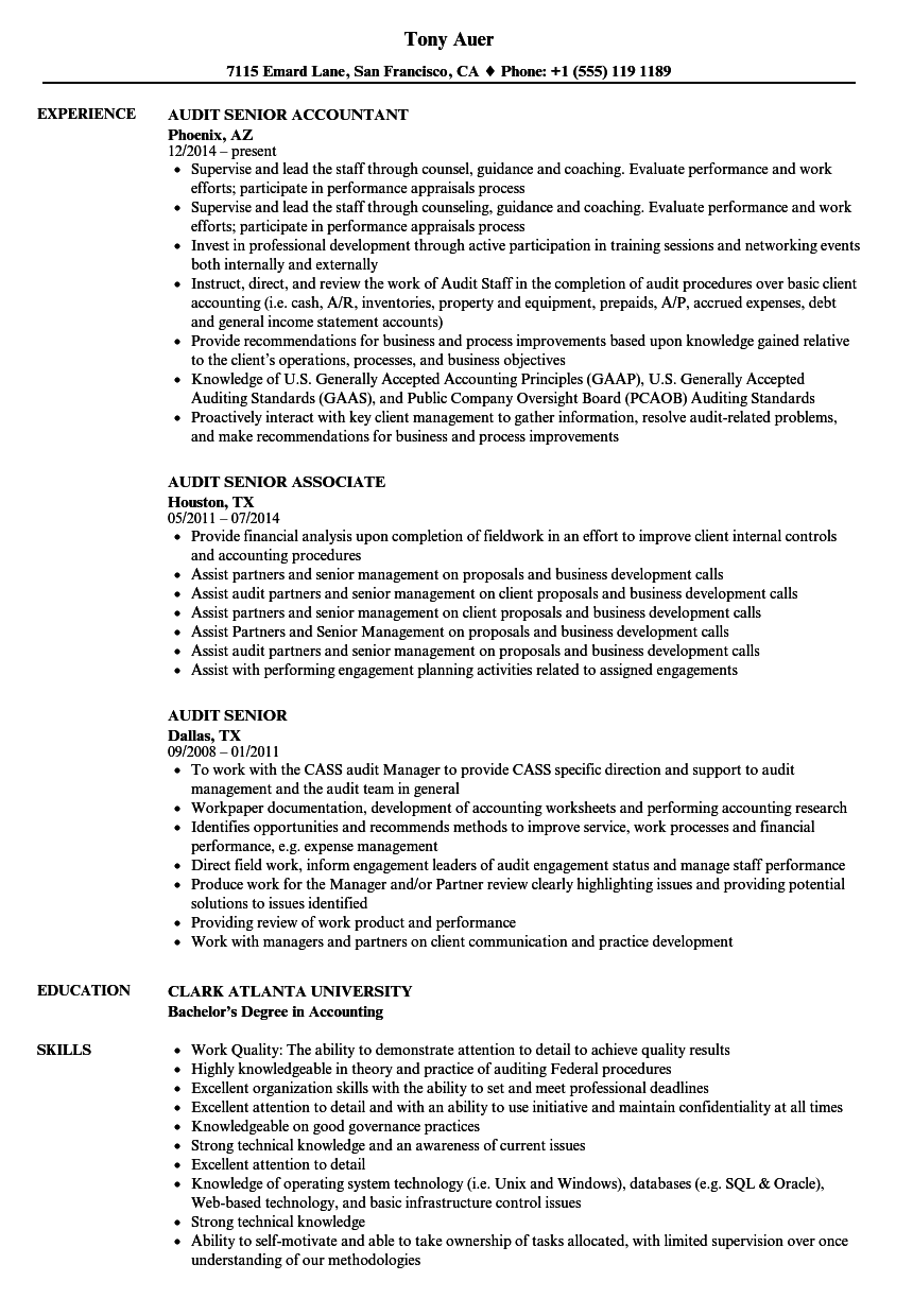 Audit Senior Resume Samples Velvet Jobs