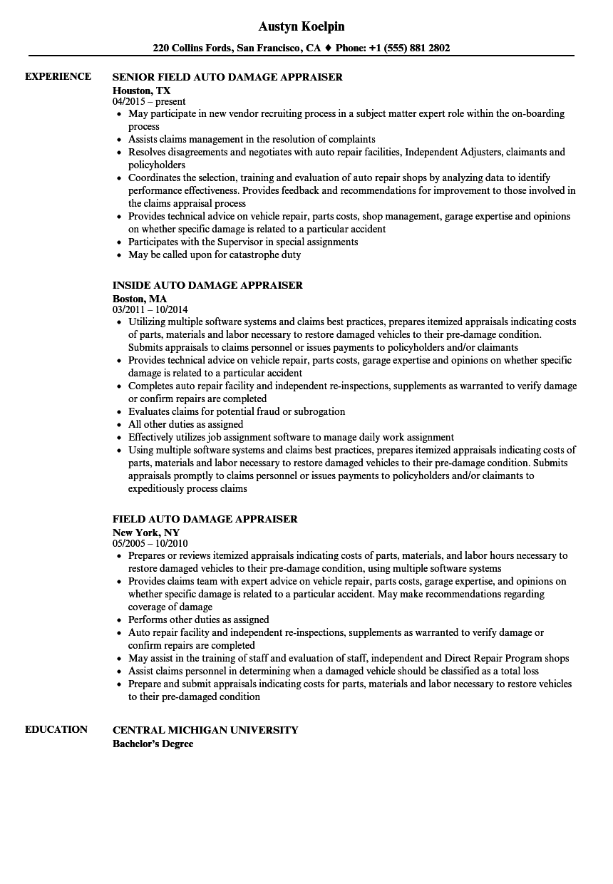 damage assessor resume examples