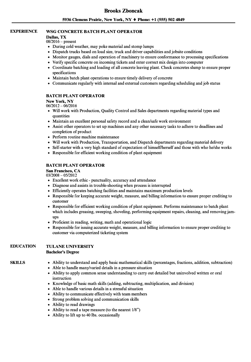 power plant operator resume sample