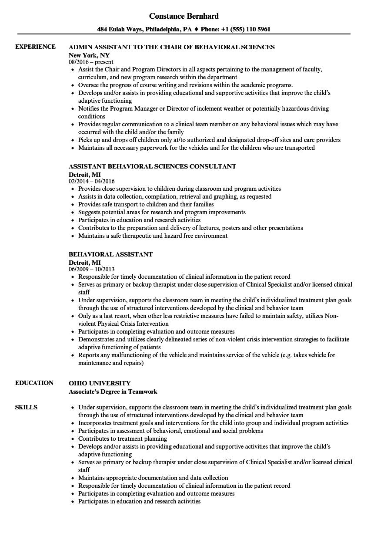 program assistant resume examples
