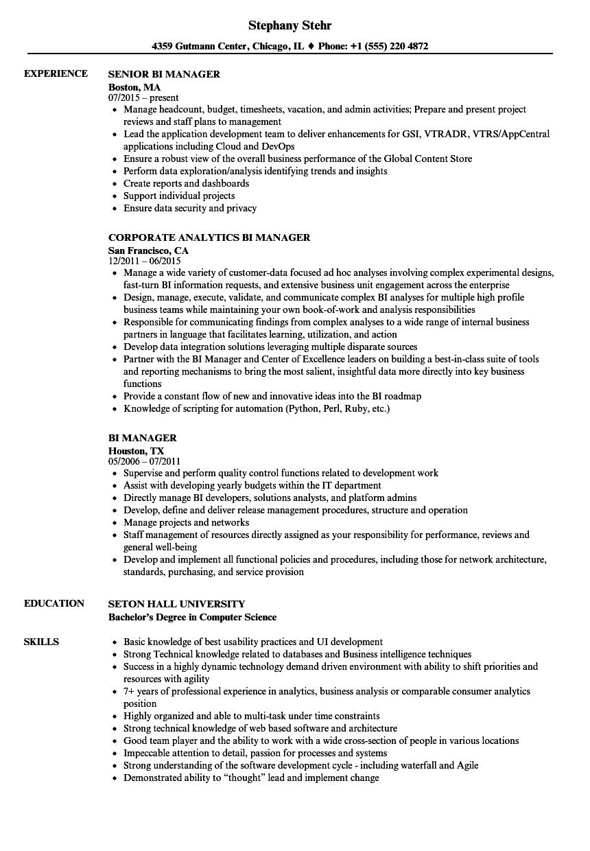 sap bi developer resume sample