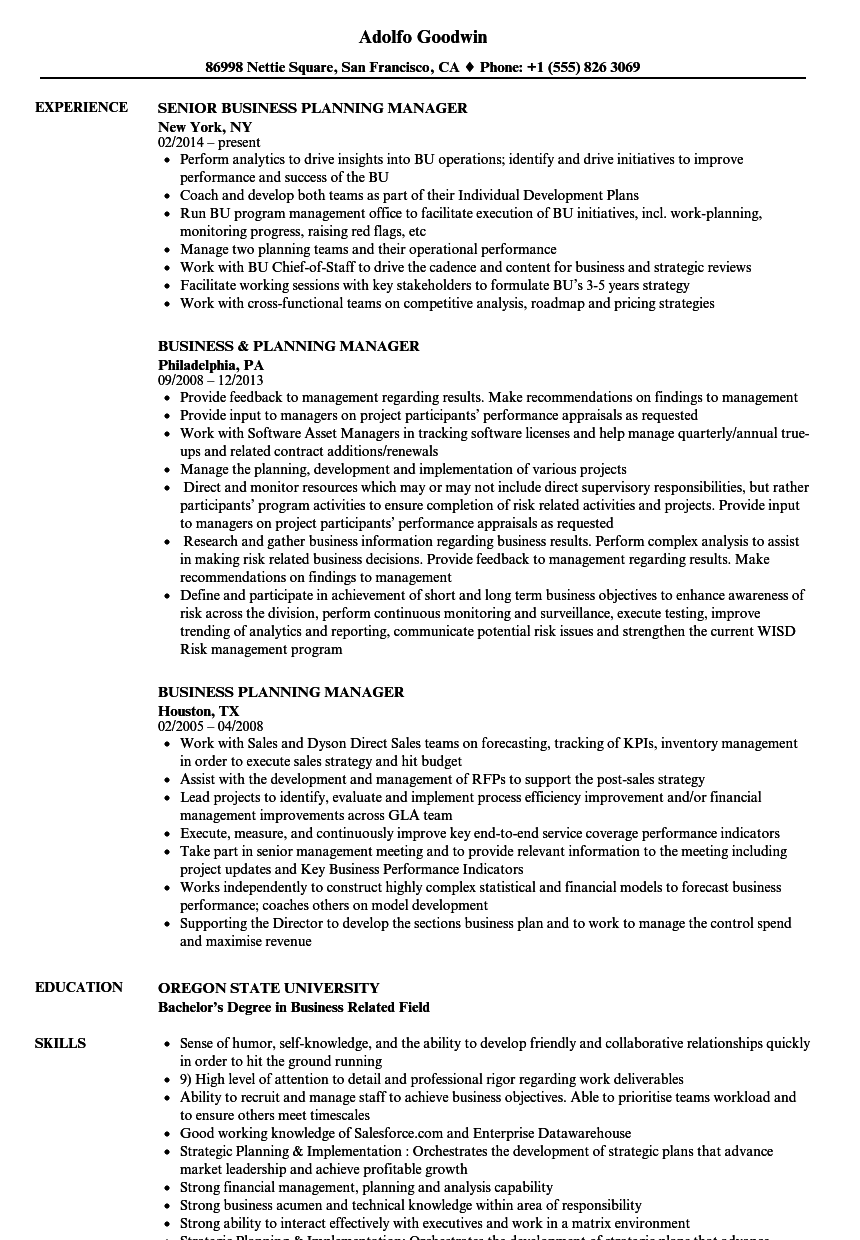 Business Planning Manager Resume Samples Velvet Jobs