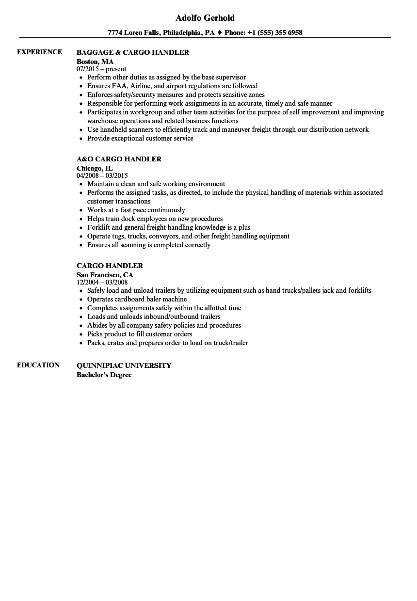 Cargo Handler Resume Samples  Velvet Jobs