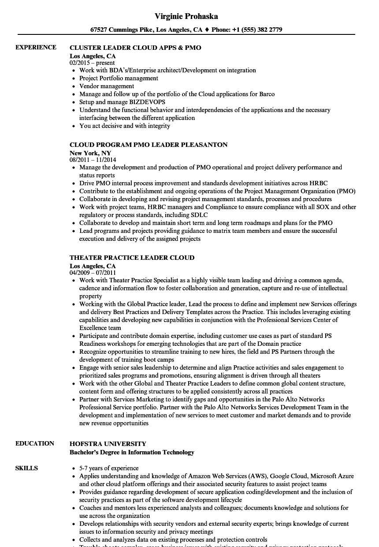marketing cloud consultant resume sample