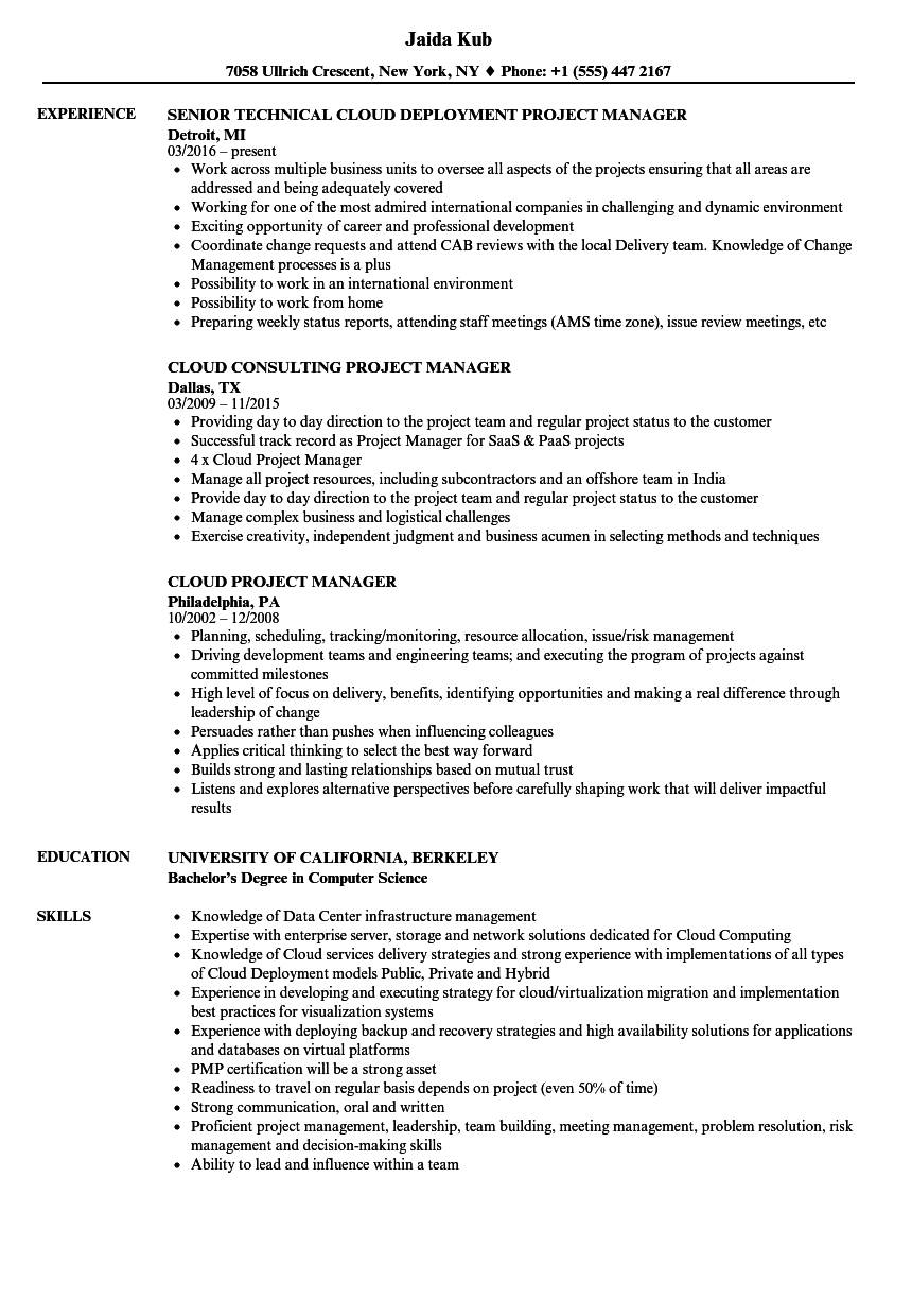 sample application development project manager resume