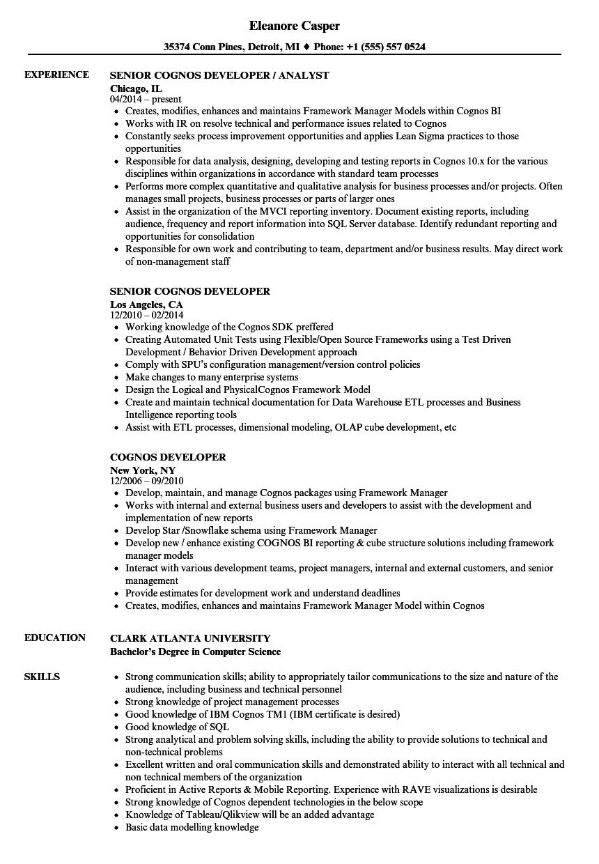 Cognos Report Developer Cover Letter