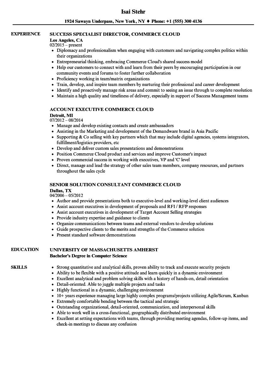 salesforce marketing cloud consultant resume sample