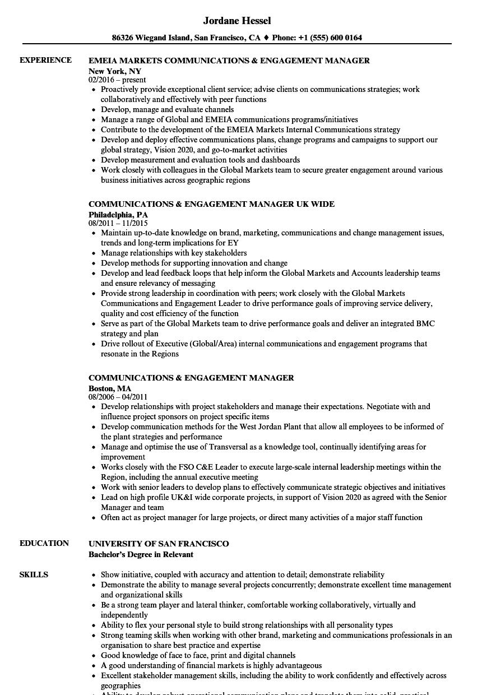 digital manager resume sample
