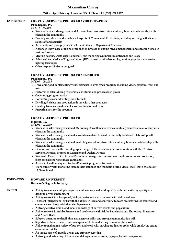vfx producer resume sample