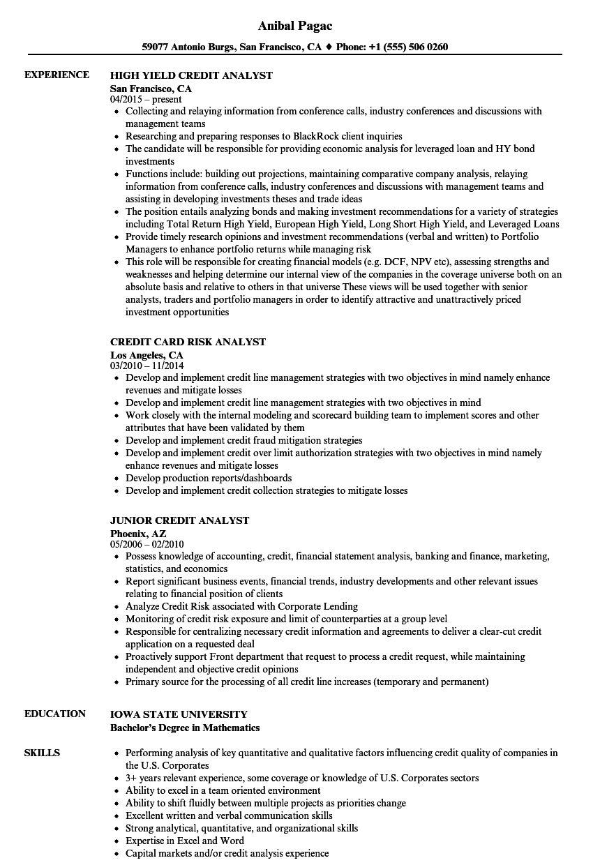 Credit Analyst Analyst Resume Samples  Velvet Jobs
