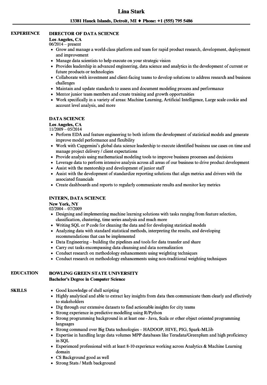 sample project resume