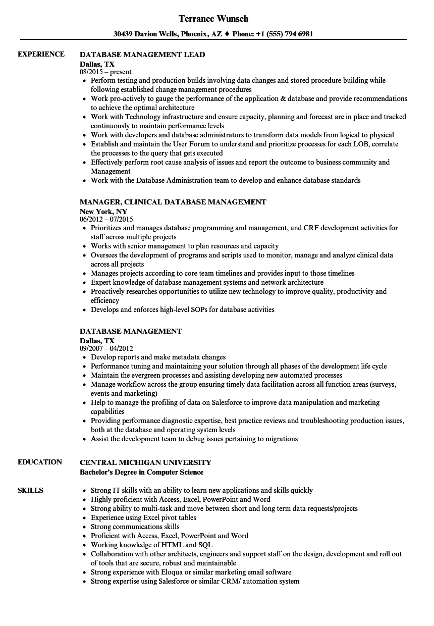 Database Management Resume Samples Velvet Jobs