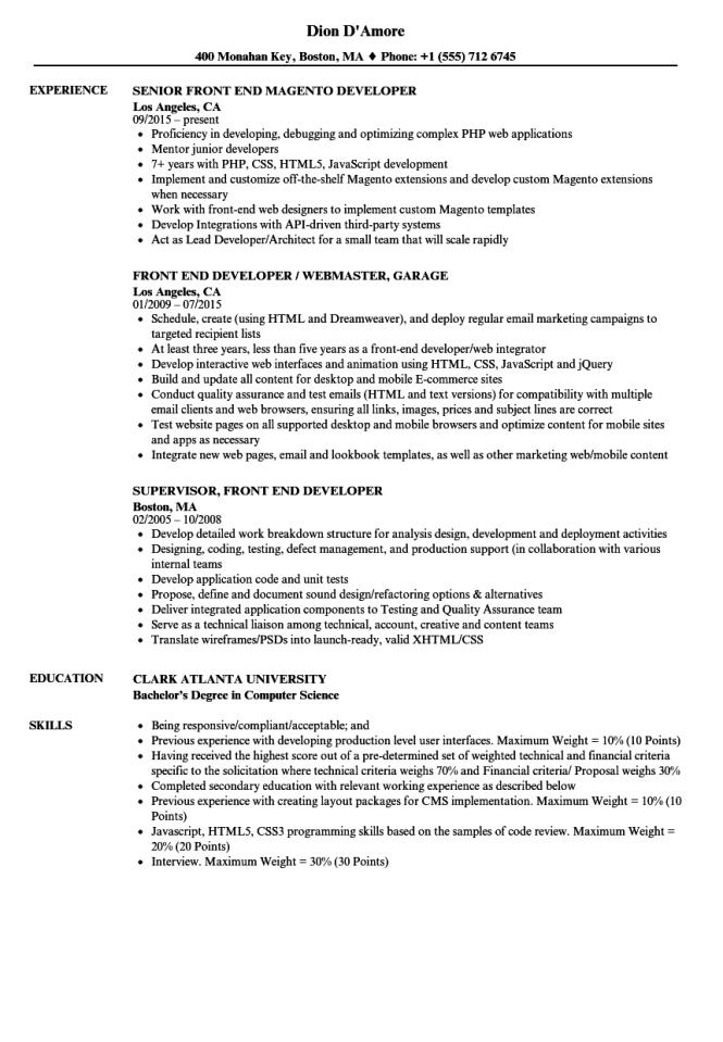Front End Developer Resume Examples - Resume Sample