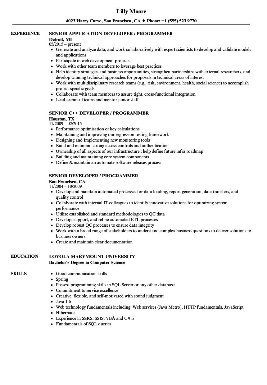 Developer  Programmer Resume Samples  Velvet Jobs