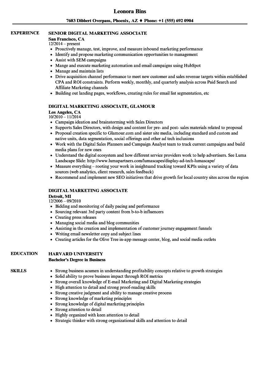 sample associate director resume