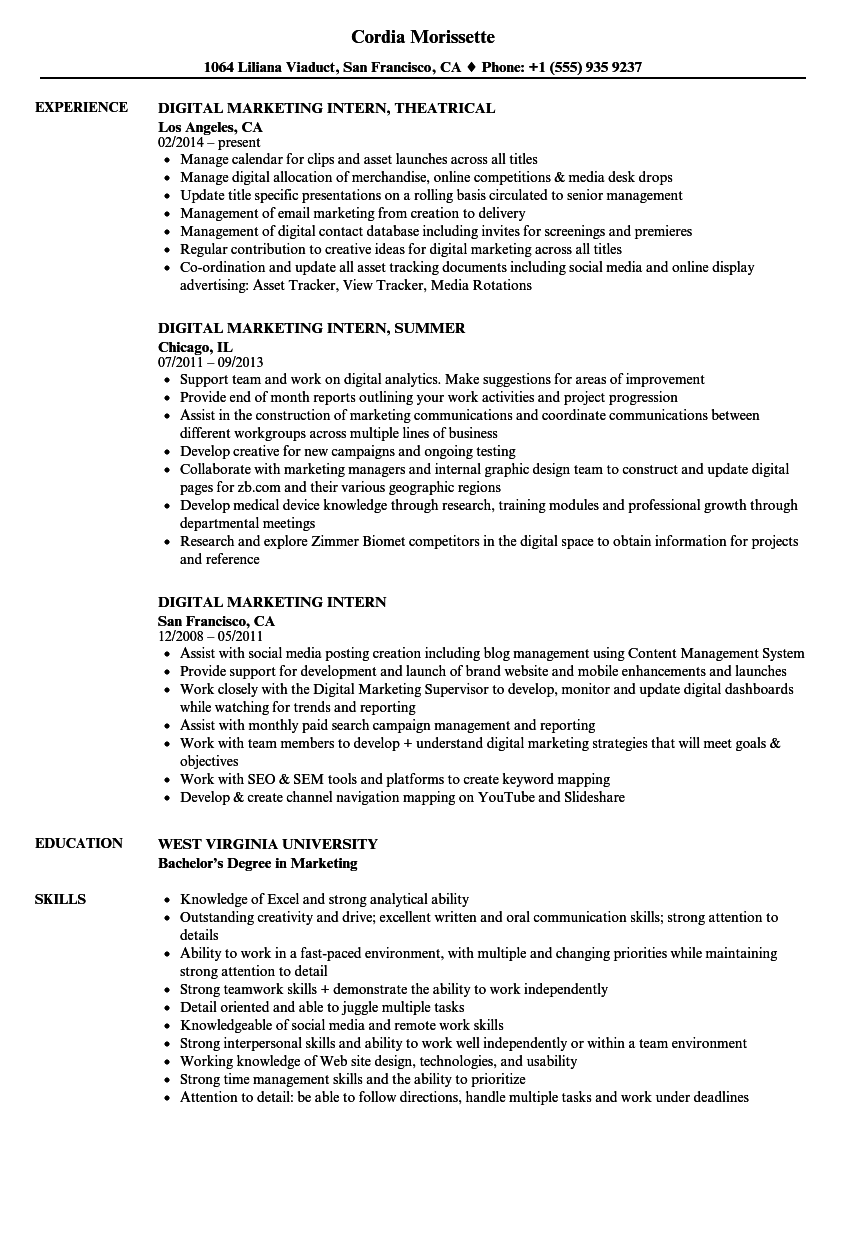 Digital Marketing Intern Resume Samples | Velvet Jobs