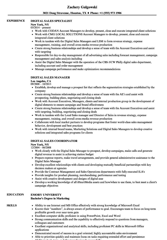 digital marketing manager resume sample