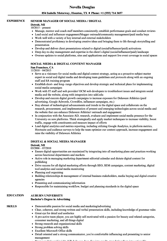 digital content manager resume samples