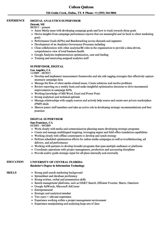 digital analytics sample resume