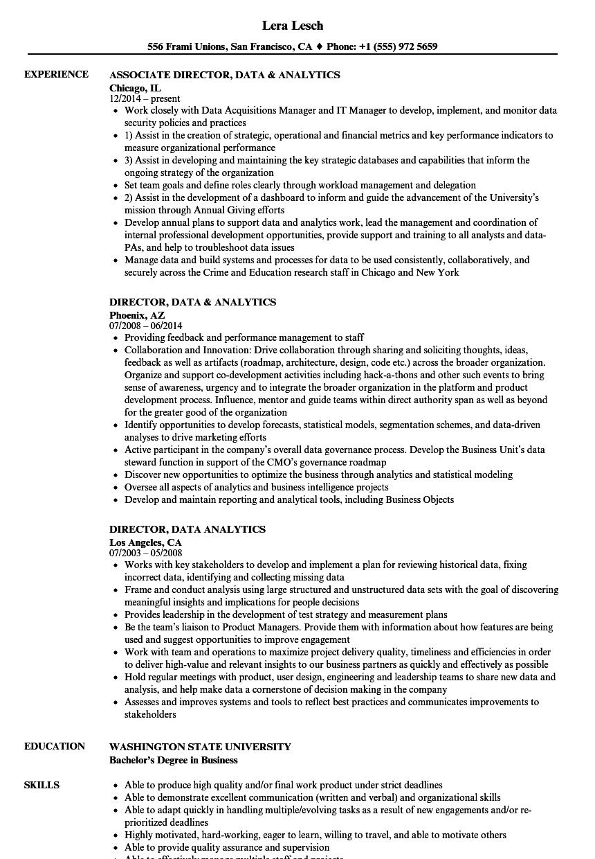 analytics director resume sample