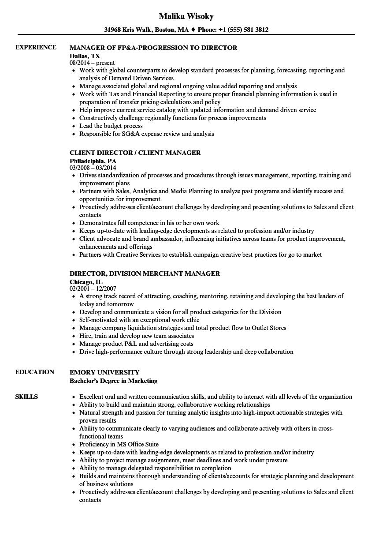 Director / Manager Resume Samples | Velvet Jobs
