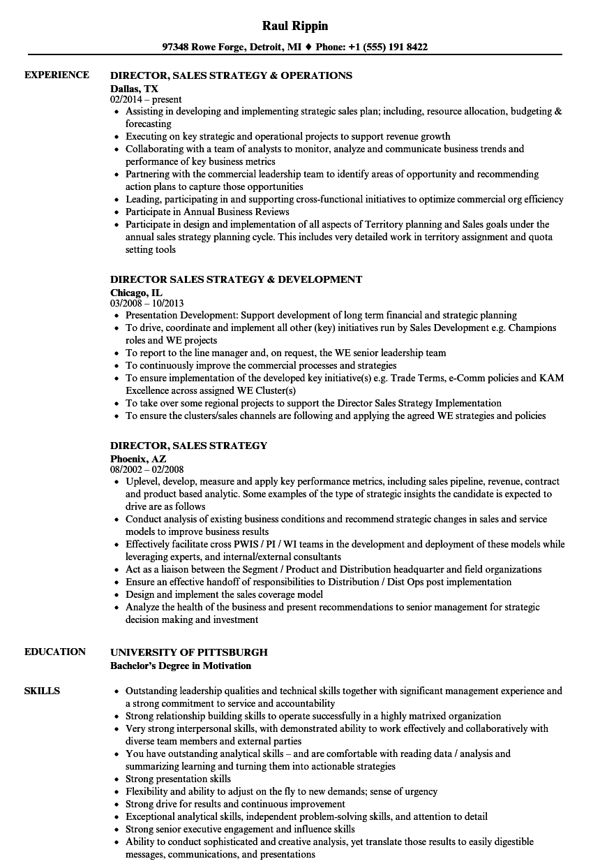 director of sales and marketing resume sample