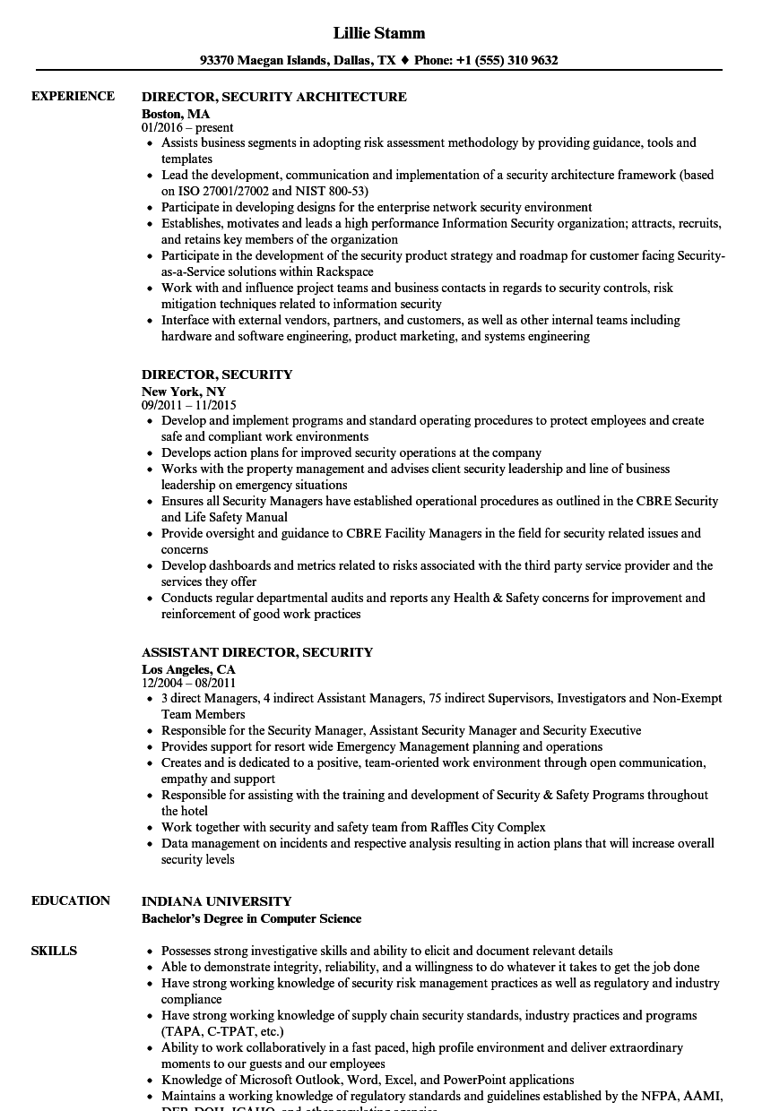 Director Security Resume Samples Velvet Jobs