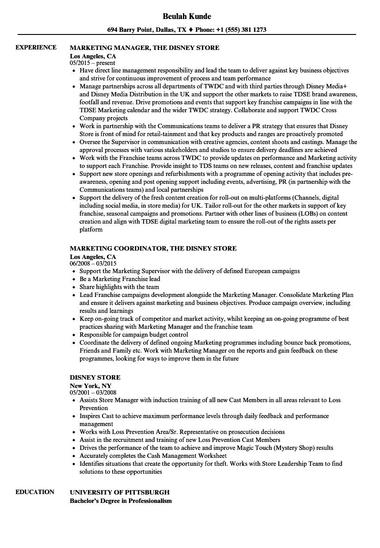 sample disney resume