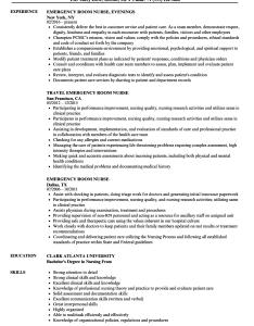 Download emergency room nurse resume sample as image file also samples velvet jobs rh velvetjobs
