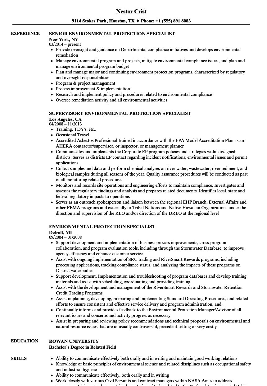 program manager sample resume gs