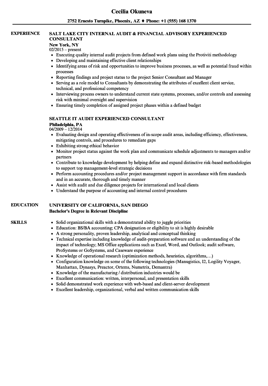 Download Experienced Consultant Resume Sample As Image File