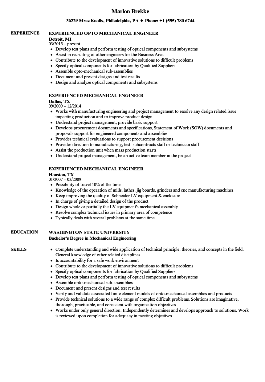 sample resumes for 1 year experienced