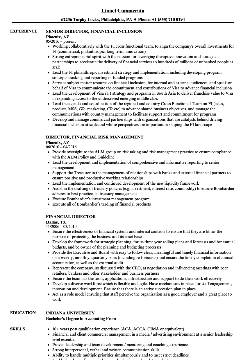 Download Financial Director Resume Sample As Image File