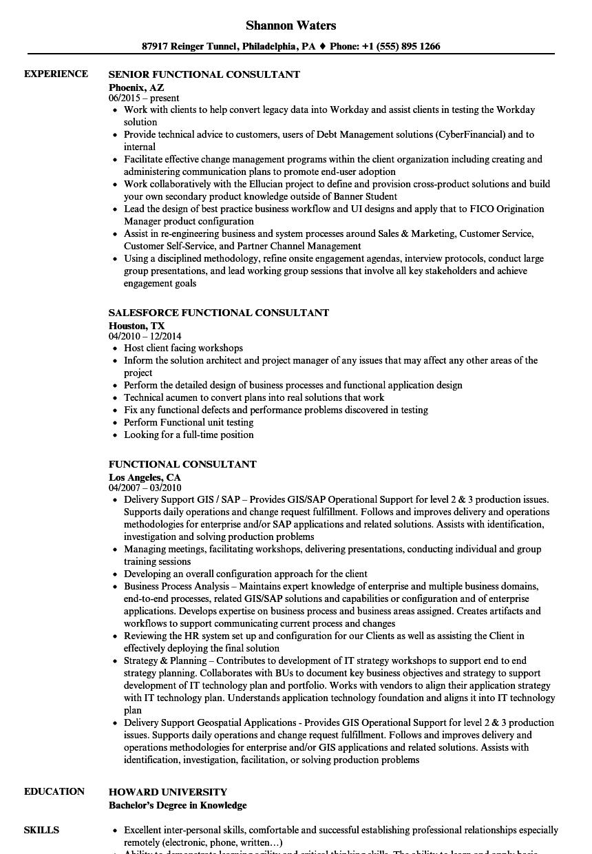 Functional Consultant Resume Samples  Velvet Jobs