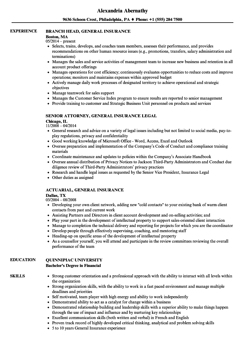 General Insurance Resume Samples Velvet Jobs