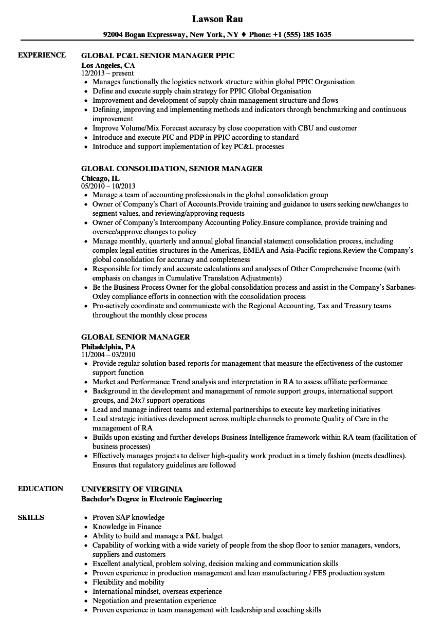 Global Senior Manager Resume Samples  Velvet Jobs