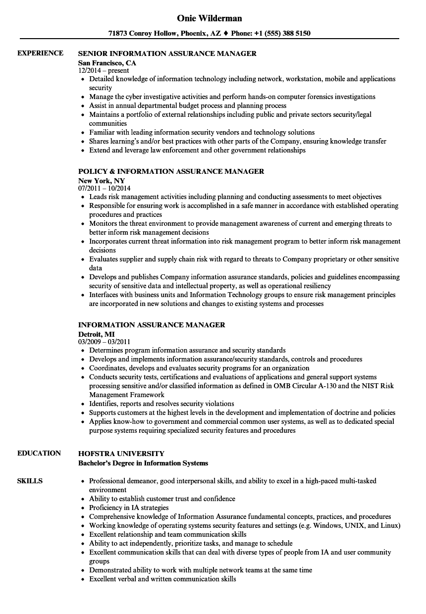 Information Assurance Manager Resume Samples Velvet Jobs